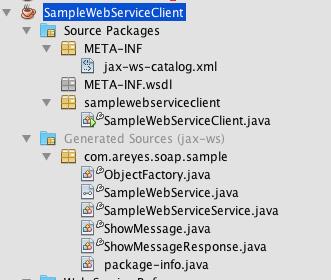 webservice_cl_gen_code