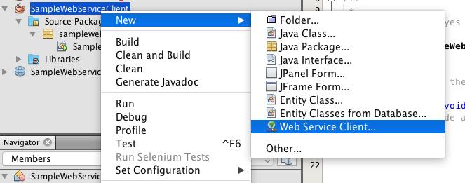 webservice_client